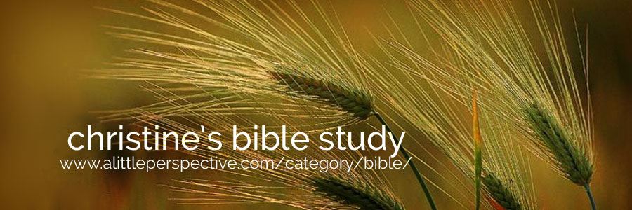 christine's bible study | a little perspective